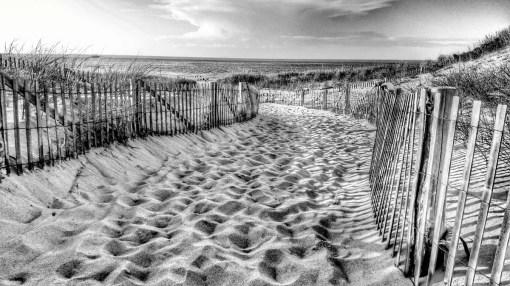 Sand fence_001 B&W