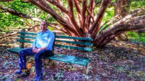 Arnold Arboretum Bruce