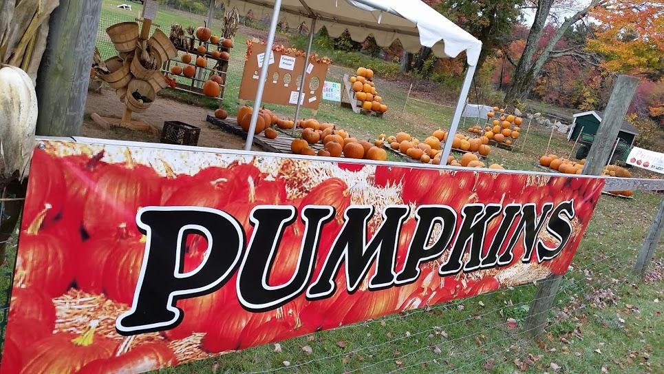 West End Creamery Pumpkins